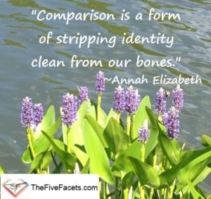Annah Elizabeth Comparison Quote The Five Facets